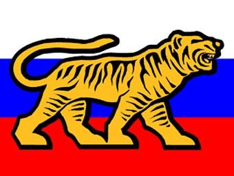 Автомобилистам Приморья отказали в регистрации