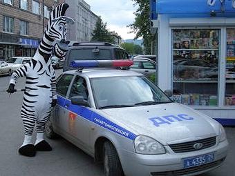 Инспекторы ГИБДД в Йошкар-Оле переоденутся в зебру