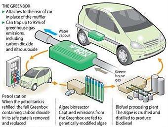 Британские химики научились превращать выхлопные газы в биотопливо