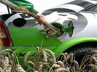 Ученые признали биотопливо вредным для окружающей среды