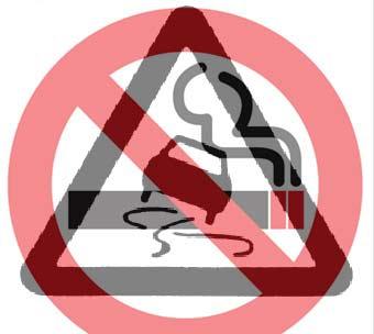 В Германии могут запретить курение за рулем