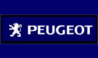 Умер глава компании Peugeot-Citroen Пьер Пежо