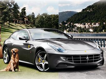 Американский универмаг предложил Ferrari FF в качестве подарка на Рождество