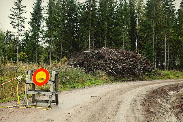 Один день в роли финского раллиста. Фото 2
