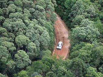 Бразилия проведет кандидатскую гонку WRC