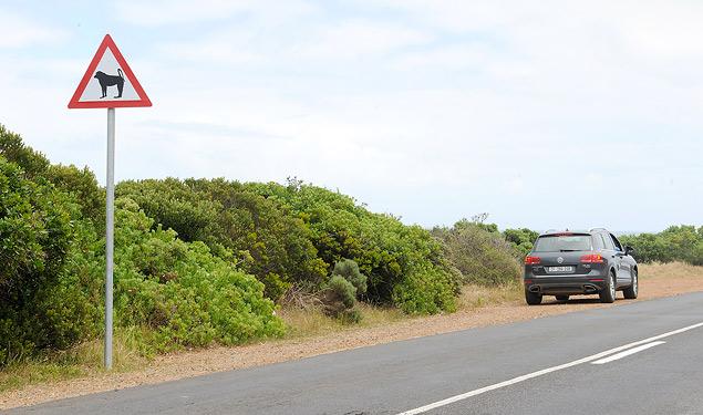Путешествуем по ЮАР на Volkswagen Touareg. Фото 11