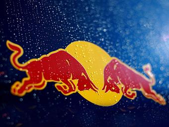Red Bull станет промоутером WRC
