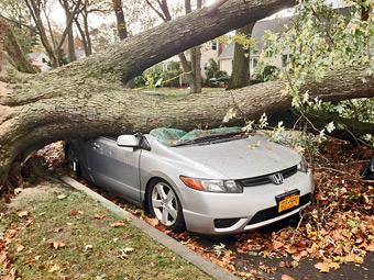 """В США из-за урагана """"Сэнди"""" уничтожат 15 тысяч машин"""