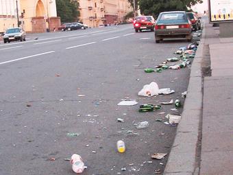 Депутаты отказались от штрафа за выброшенный из машины мусор