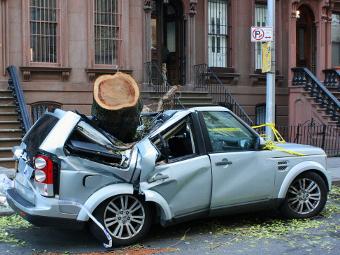 """В США посчитали пострадавшие от урагана """"Сэнди"""" автомобили"""