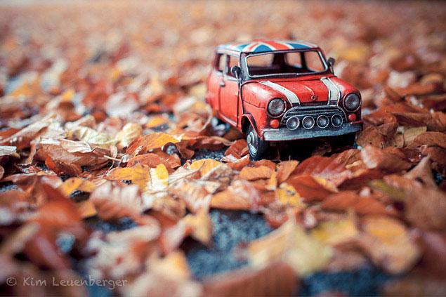 Путешествия маленьких машинок в фотографиях. Фото 3