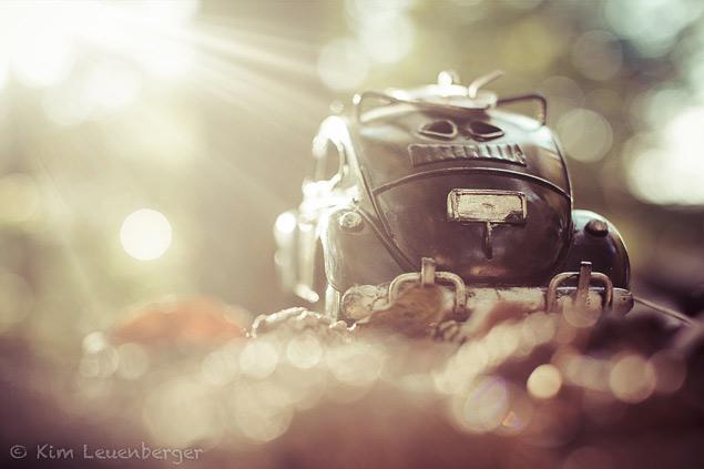 Путешествия маленьких машинок в фотографиях. Фото 11
