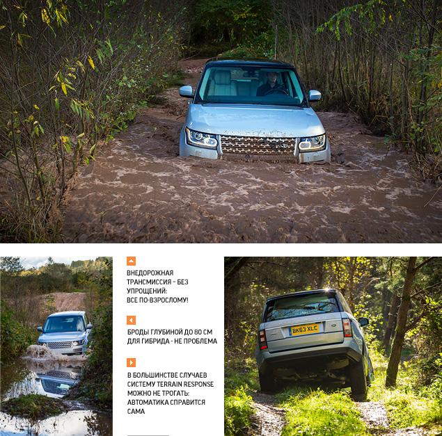 Land Rover разом обновил все ключевые модели. Фото 11