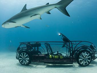 VW сделал клетку от акул в виде кабриолета Beetle