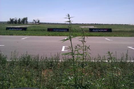 Автодром «Сокол» в 40 километрах от Алма-Аты будет готов к 2015 году