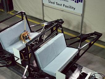 Subaru придумала краш-тесты для собак