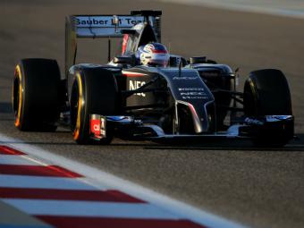 Тест-пилот Sauber Сергей Сироткин выступит на Гран-при России