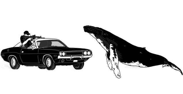 Запрет на черные машины и другие странные автомобильные законы мира. Фото 20