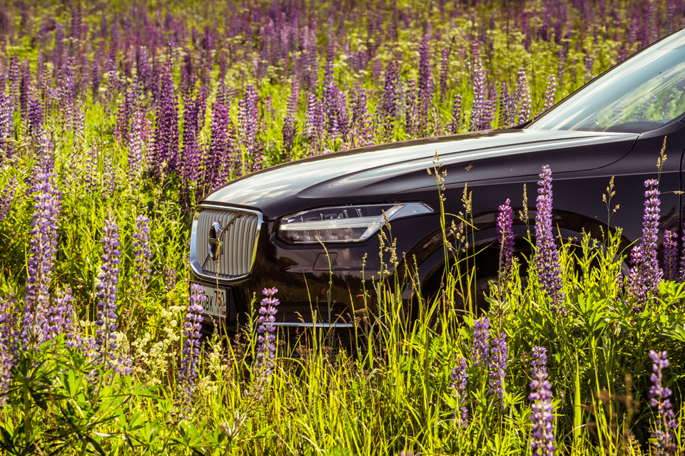 21-дюймовые колеса вроссийских ямах иматрешка вместо рычага «автомата»: тест Volvo XC90. Фото 18
