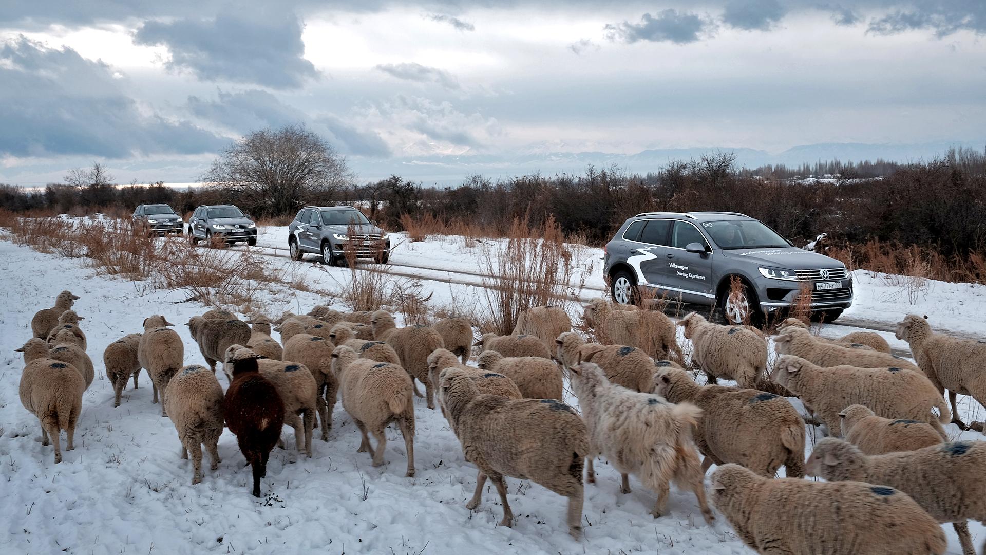 Зачем ехать в Киргизию, и почему VW Touareg неплохо подходит для этой авантюры. Фото 3