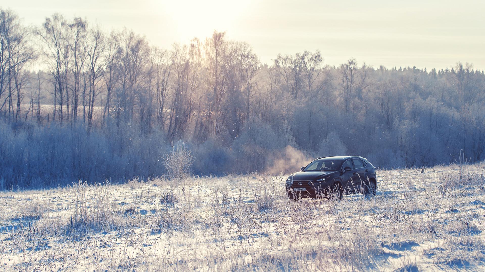 Кроссовер, который продается, когда рынок падает. Длительный тест Lexus NX. Фото 2