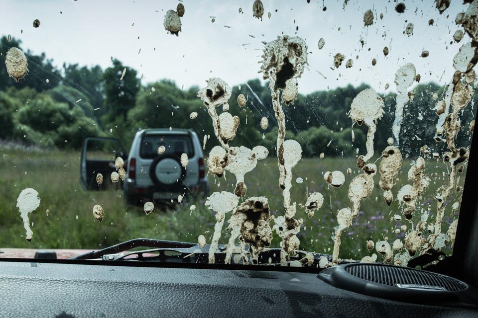 Неочень одухотворенные приключения Suzuki Jimny иJeep Wrangler набездорожье. Фото 18
