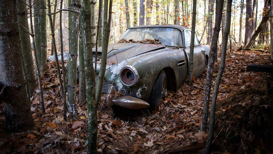 Простоявший полвека влесу Aston Martin продадут нааукционе