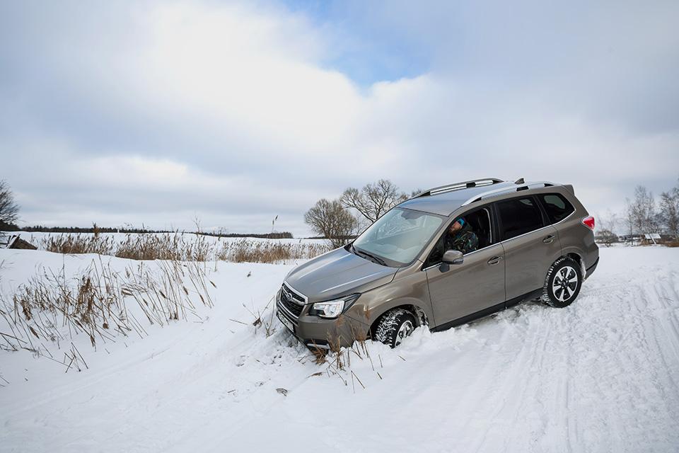 Длительный тест главной опоры Subaru— кроссовера Forester. Часть первая. Фото 5